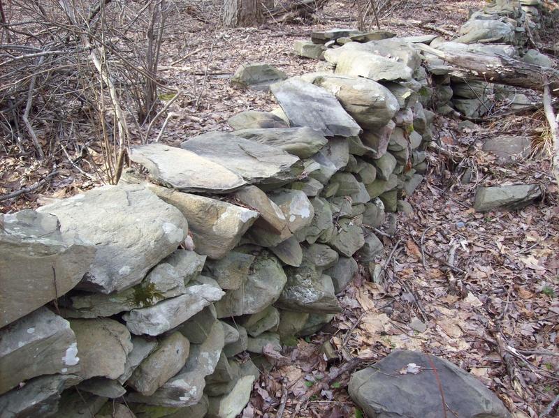 19th Century Rock Walls